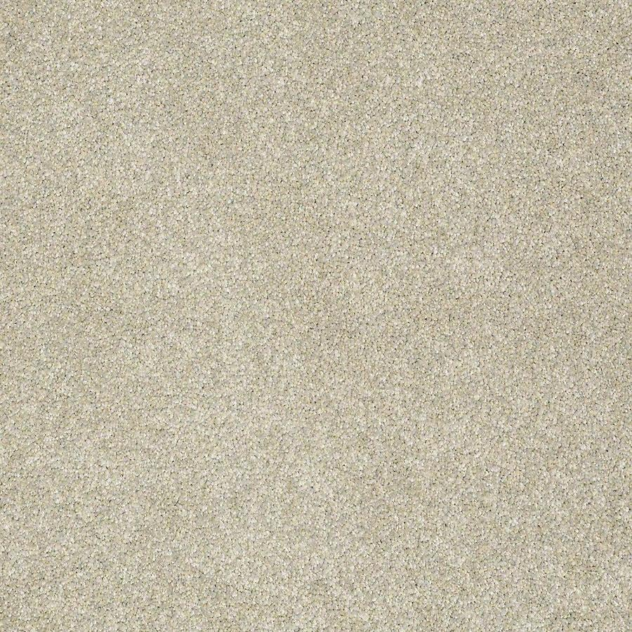 STAINMASTER PetProtect Baxter III 12-ft W x Cut-to-Length Izzy Textured Interior Carpet