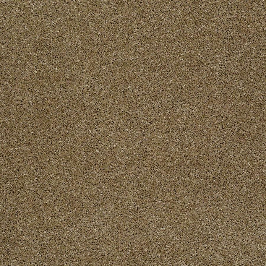 STAINMASTER PetProtect Baxter III Molly Textured Indoor Carpet