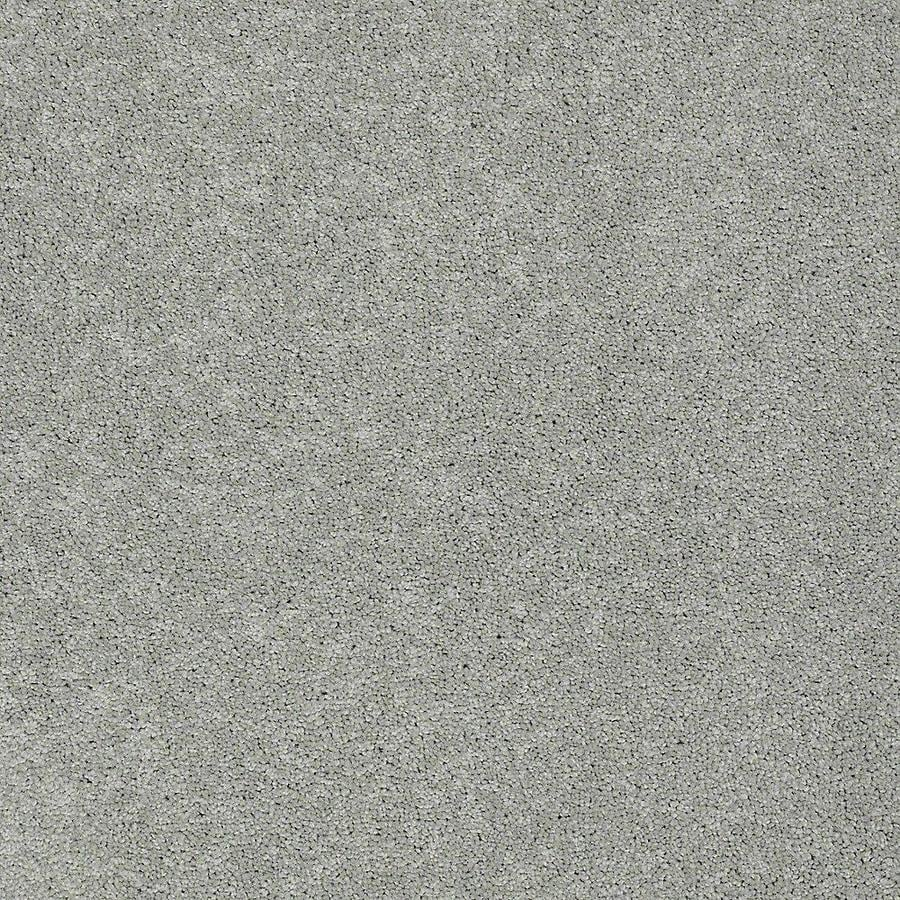 STAINMASTER PetProtect Baxter III 12-ft W x Cut-to-Length Bobo Textured Interior Carpet