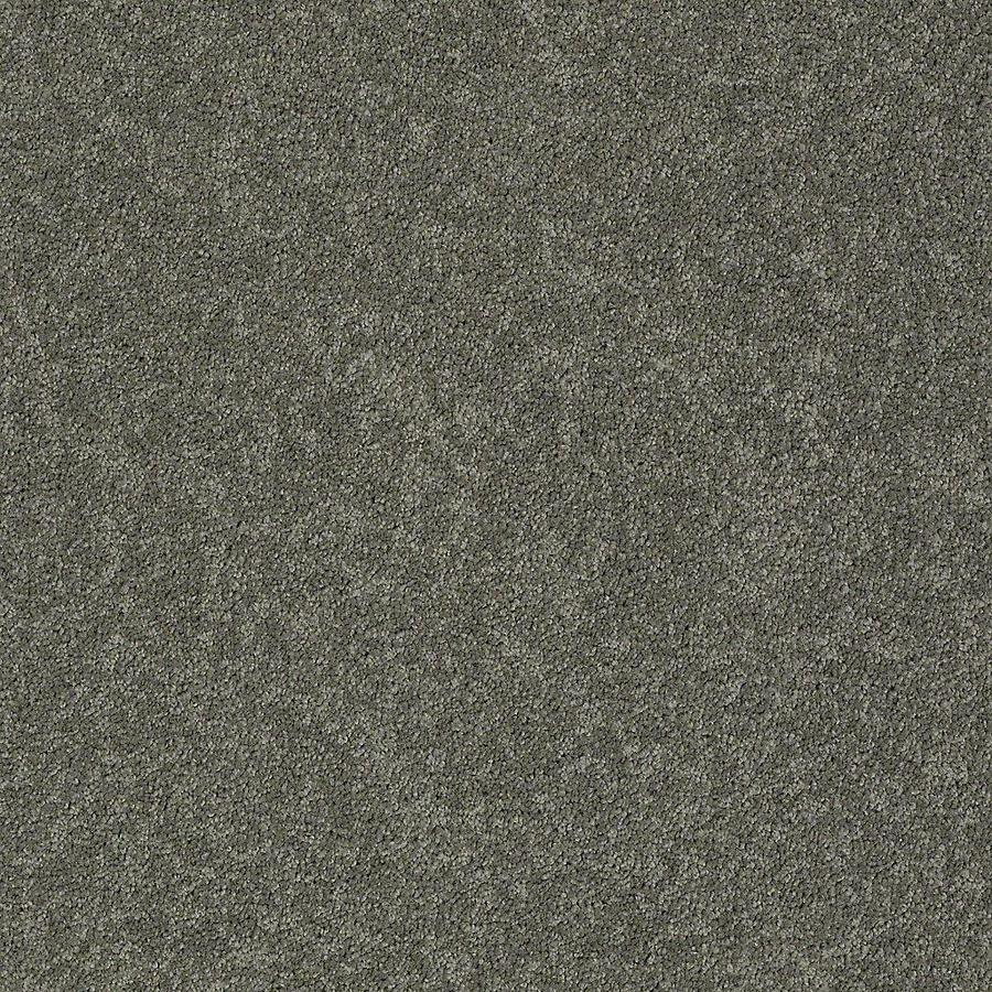 STAINMASTER PetProtect Baxter III Winston Textured Indoor Carpet