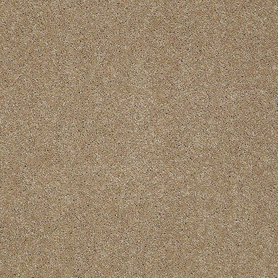 STAINMASTER Petprotect Baxter Iii Boxer Textured Interior Carpet