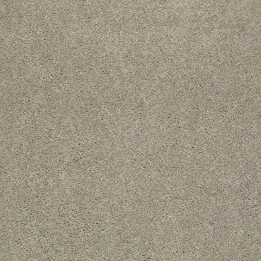 STAINMASTER Petprotect Baxter Iii Oliver Textured Interior Carpet