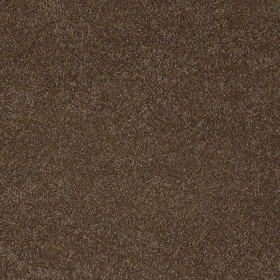 STAINMASTER PetProtect Baxter III Labrador Textured Indoor Carpet