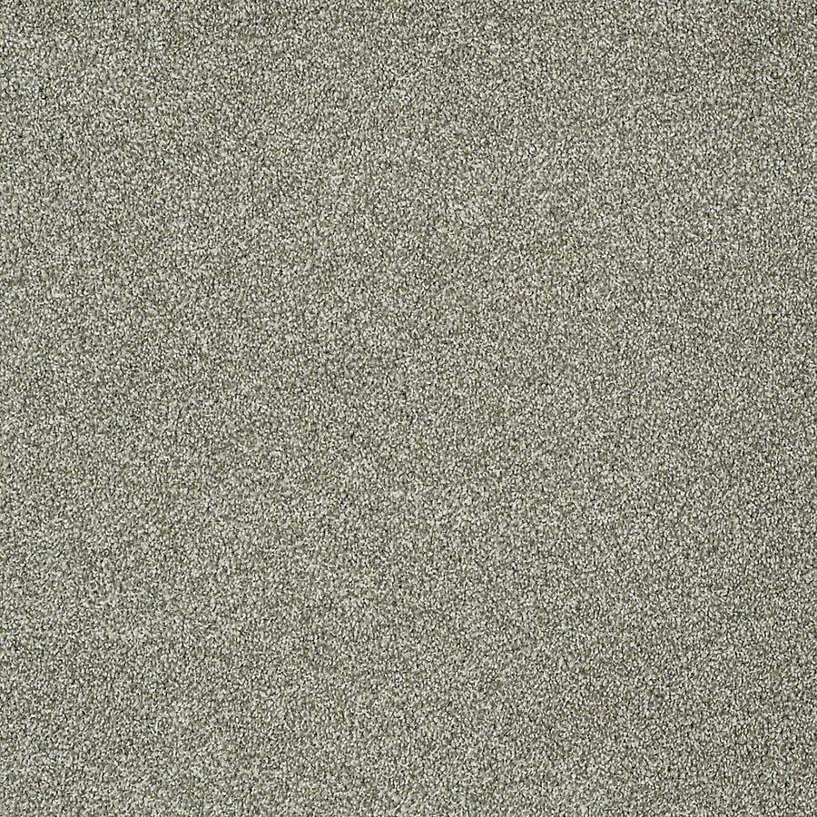 STAINMASTER Petprotect Baxter III Bentley Textured Interior Carpet