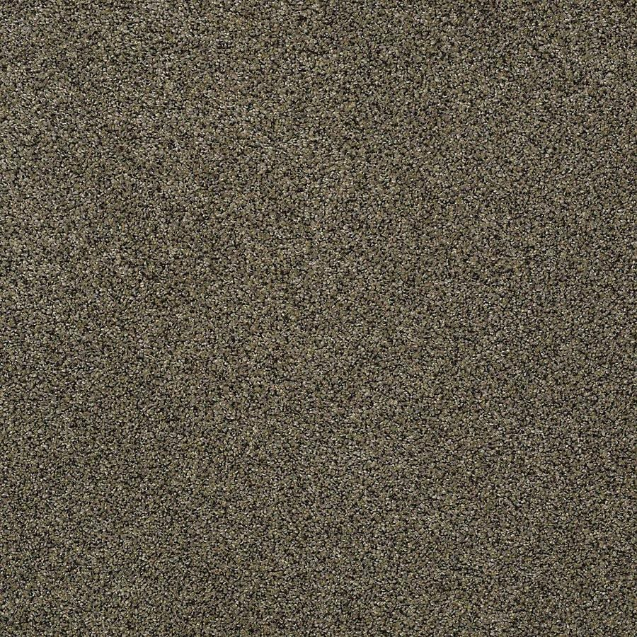 STAINMASTER PetProtect Baxter III Brody Textured Indoor Carpet