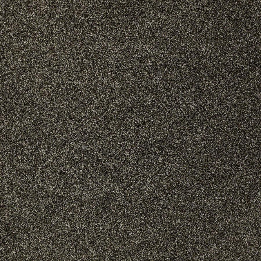 STAINMASTER Petprotect Baxter III Doberman Textured Interior Carpet
