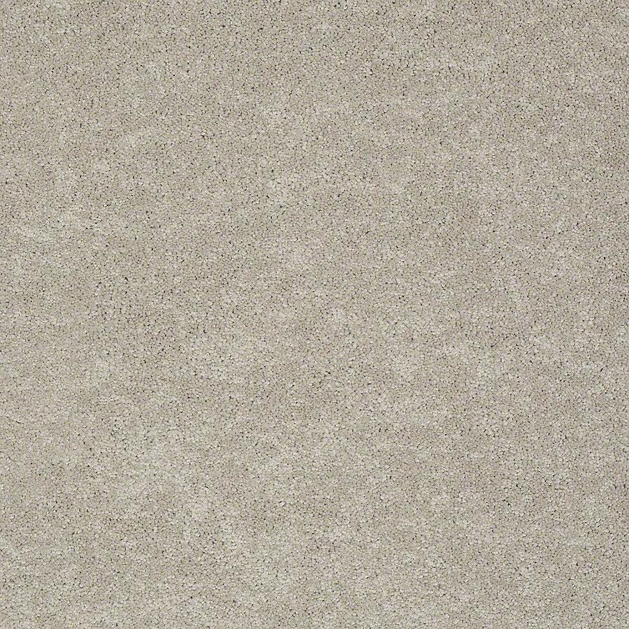 STAINMASTER PetProtect Baxter IV 12-ft W Harley Textured Interior Carpet