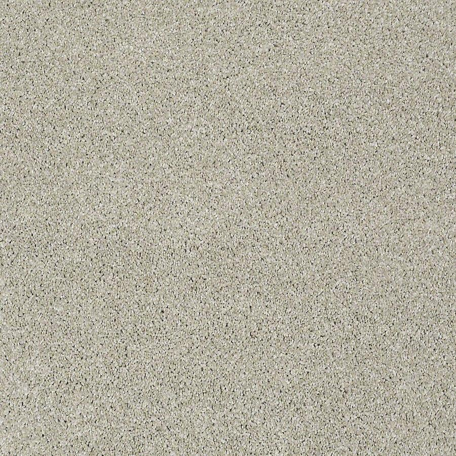 STAINMASTER PetProtect Baxter IV Marmaduke Textured Interior Carpet