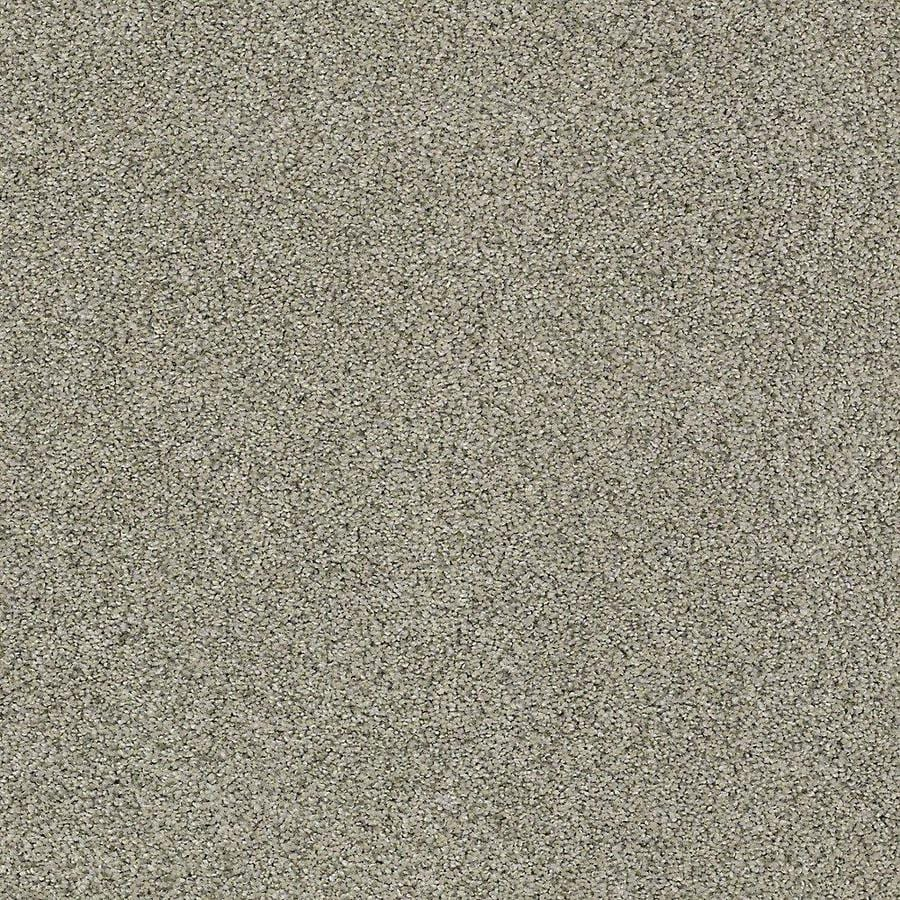 STAINMASTER PetProtect Baxter IV Bandit Textured Interior Carpet