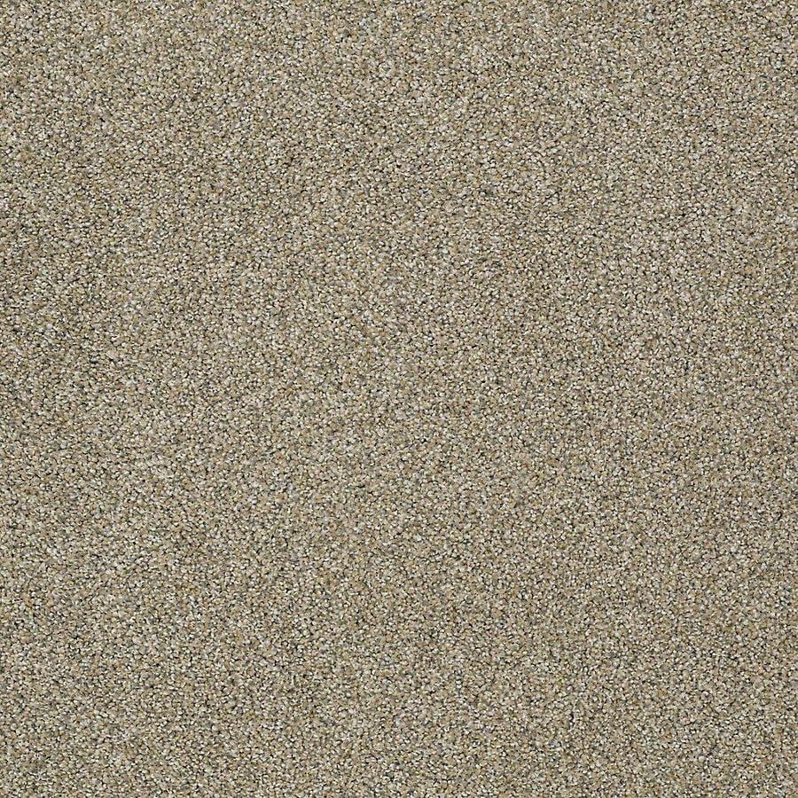 STAINMASTER PetProtect Baxter IV Sophie Textured Indoor Carpet