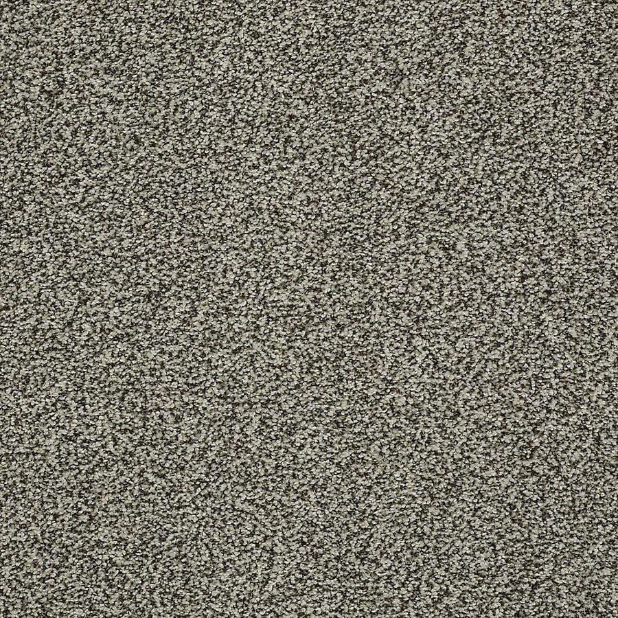 STAINMASTER PetProtect Baxter IV 12-ft W x Cut-to-Length Tank Textured Interior Carpet
