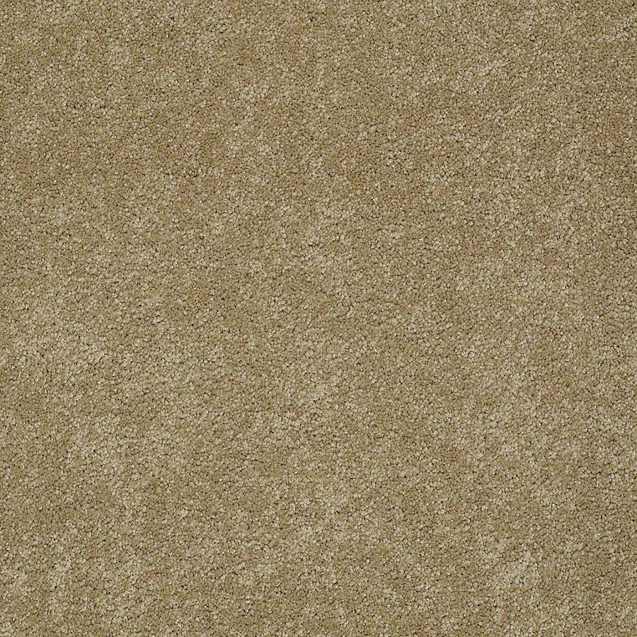 STAINMASTER PetProtect Baxter IV 12-ft W x Cut-to-Length Molly Textured Interior Carpet