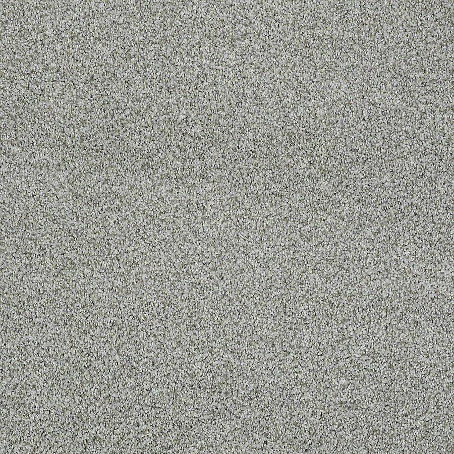 STAINMASTER PetProtect Baxter IV 12-ft W Doodle Textured Interior Carpet