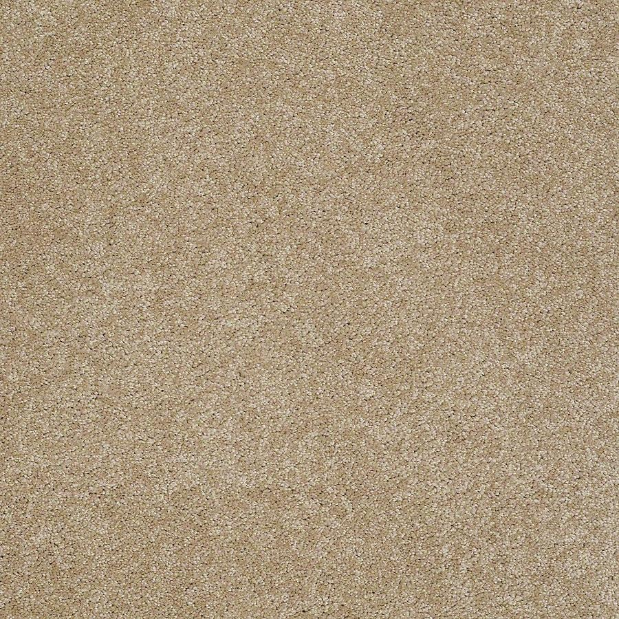 STAINMASTER PetProtect Baxter IV Boxer Textured Indoor Carpet