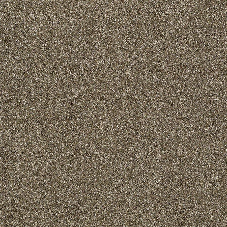 STAINMASTER PetProtect Baxter IV 12-ft W Dachshund Textured Interior Carpet