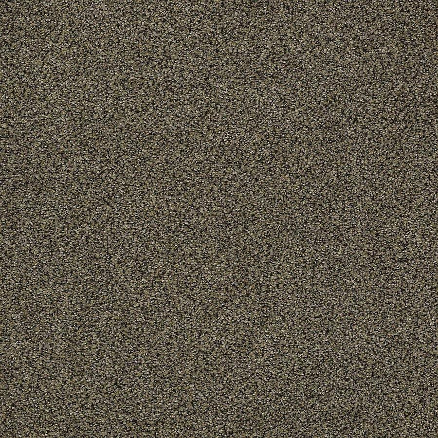 STAINMASTER PetProtect Baxter IV 12-ft W x Cut-to-Length Brody Textured Interior Carpet