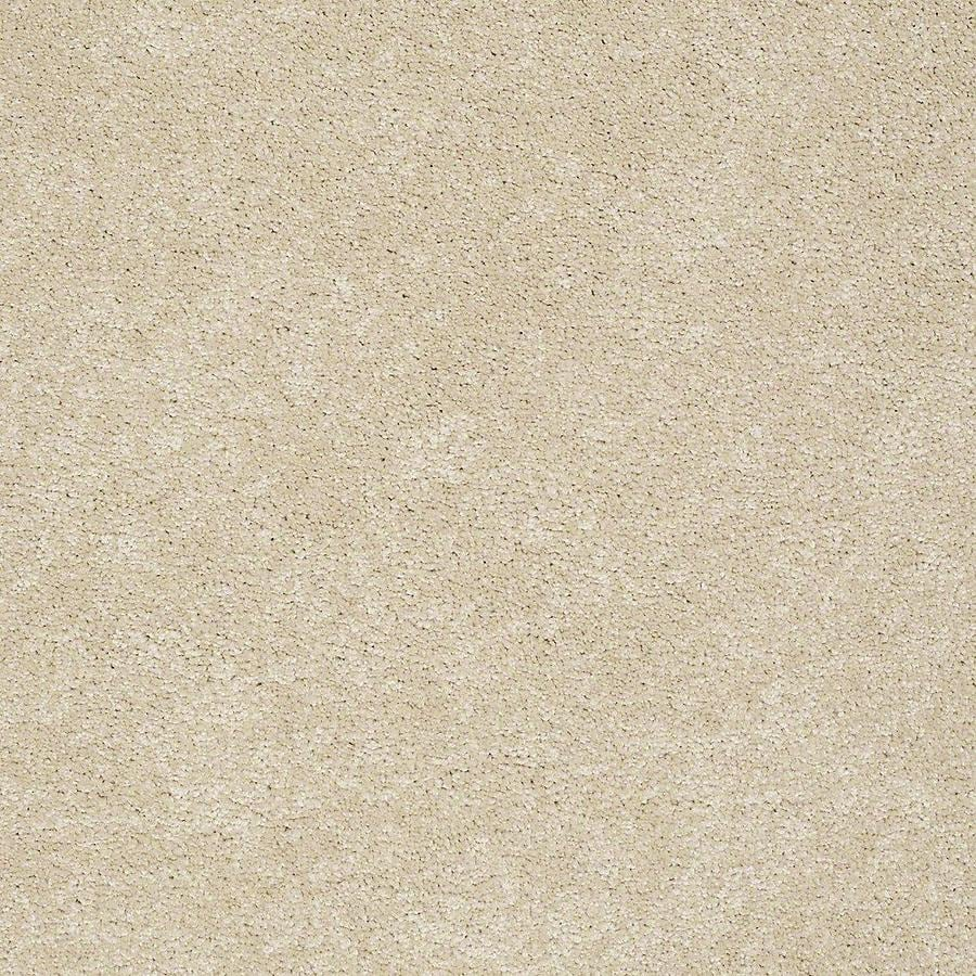 STAINMASTER PetProtect Baxter I 12-ft W x Cut-to-Length Rudy Textured Interior Carpet