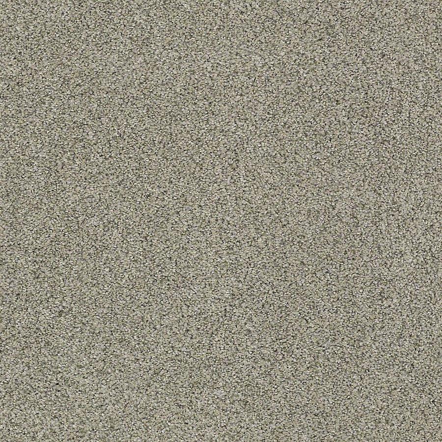 STAINMASTER PetProtect Baxter I Bandit Textured Indoor Carpet