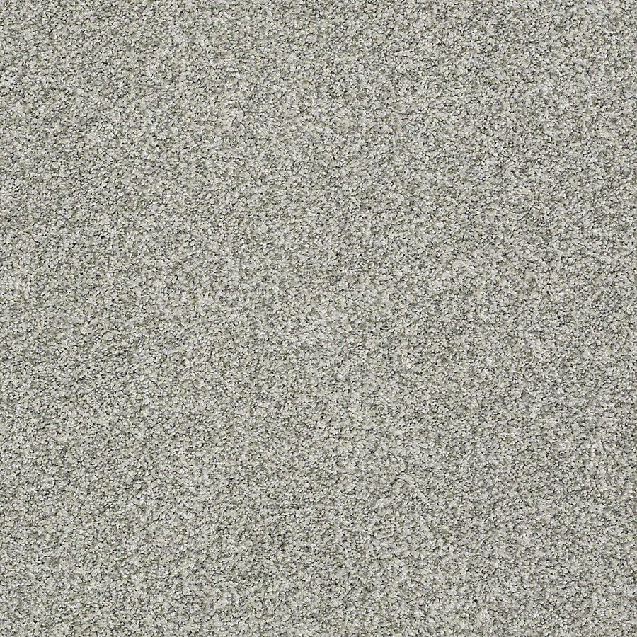 STAINMASTER PetProtect Baxter I 12-ft W Trixie Textured Interior Carpet