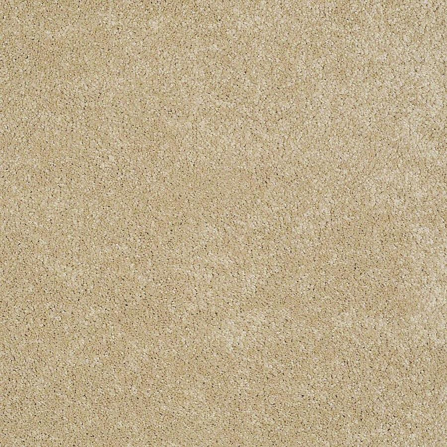 STAINMASTER PetProtect Baxter I Retriever Textured Interior Carpet