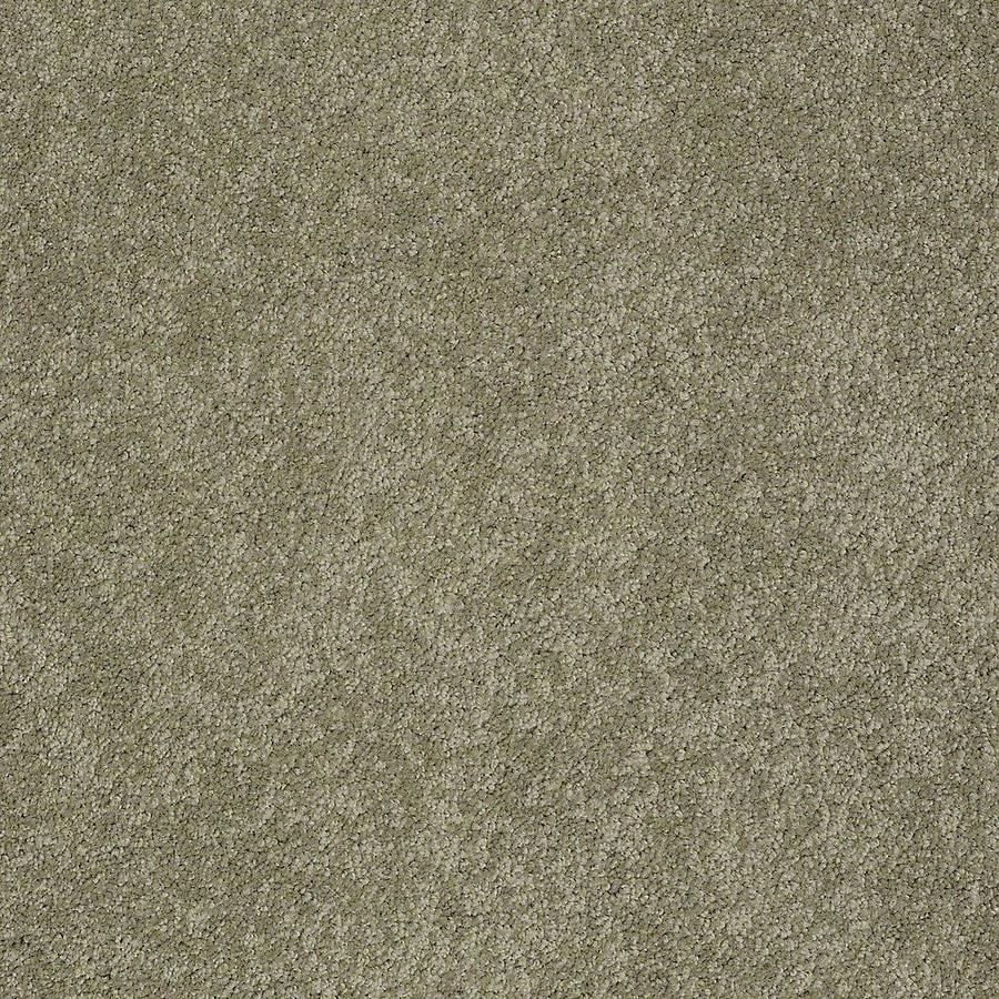 STAINMASTER PetProtect Baxter I 12-ft W x Cut-to-Length Buddy Textured Interior Carpet
