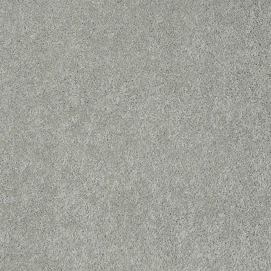 STAINMASTER PetProtect Baxter I 12-ft W x Cut-to-Length Bobo Textured Interior Carpet