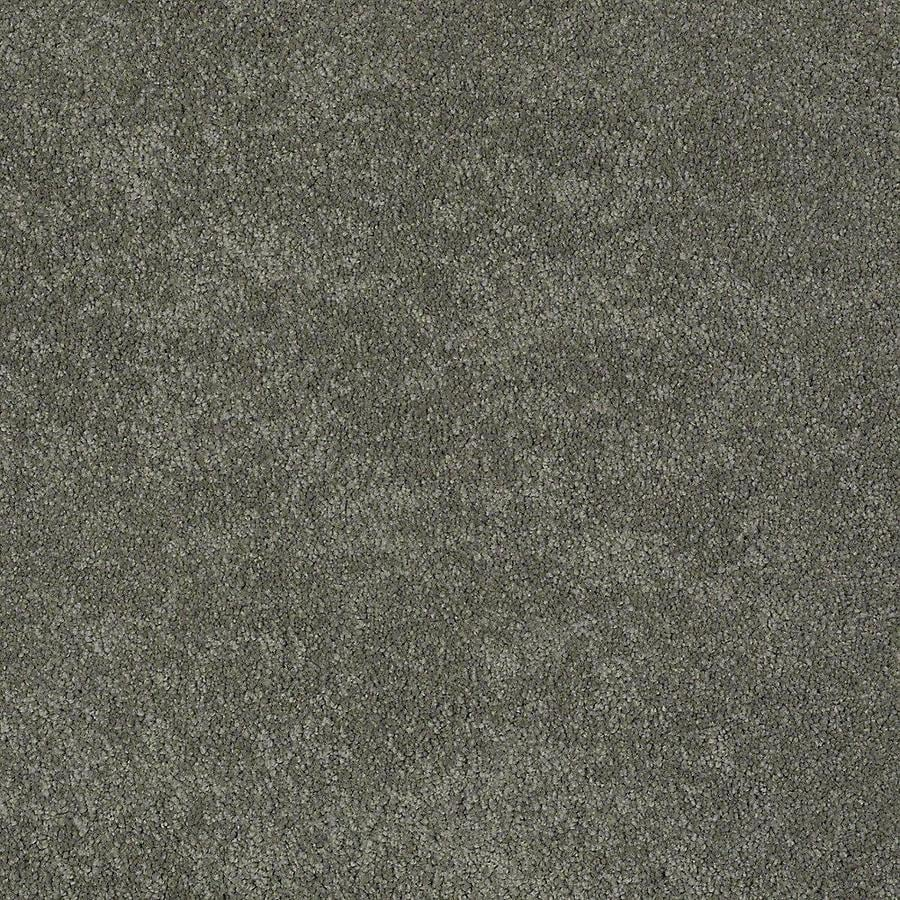 STAINMASTER PetProtect Baxter I Winston Textured Indoor Carpet