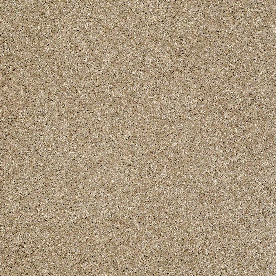 STAINMASTER PetProtect Baxter I Boxer Textured Indoor Carpet