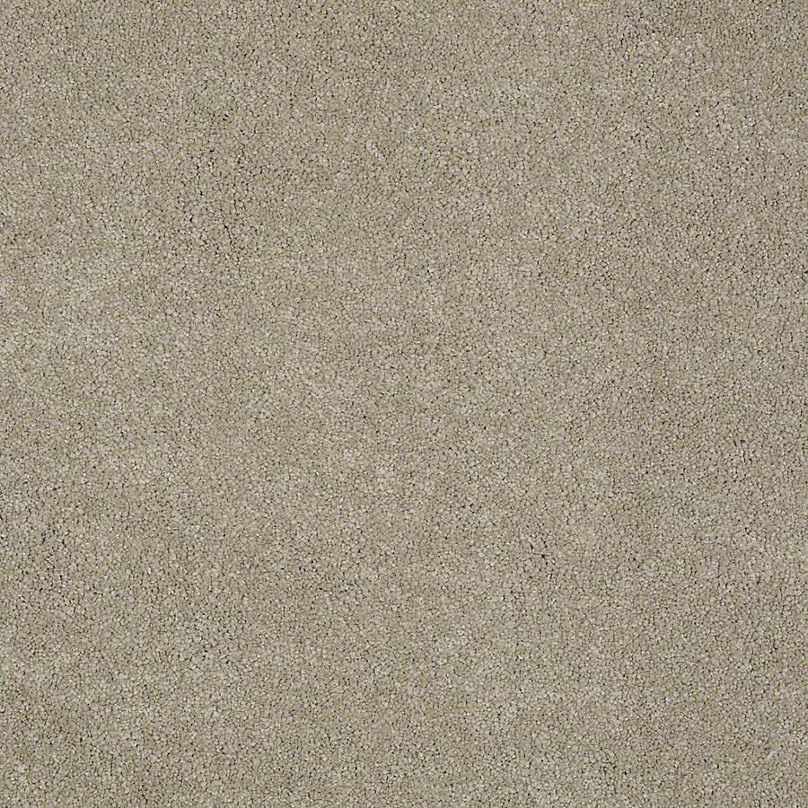 STAINMASTER PetProtect Baxter I Oliver Textured Interior Carpet
