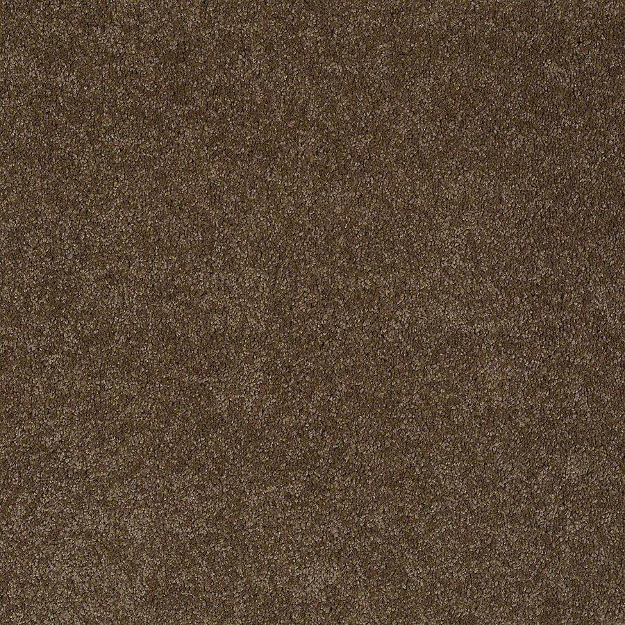 STAINMASTER PetProtect Baxter I 12-ft W x Cut-to-Length Labrador Textured Interior Carpet
