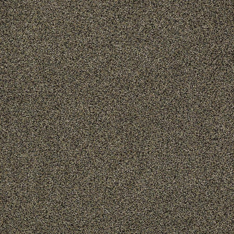 STAINMASTER PetProtect Baxter I 12-ft W x Cut-to-Length Brody Textured Interior Carpet