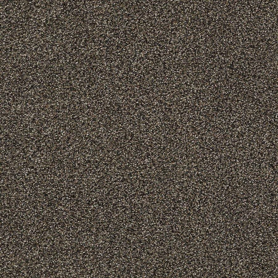 STAINMASTER PetProtect Baxter I 12-ft W Sasha Textured Interior Carpet