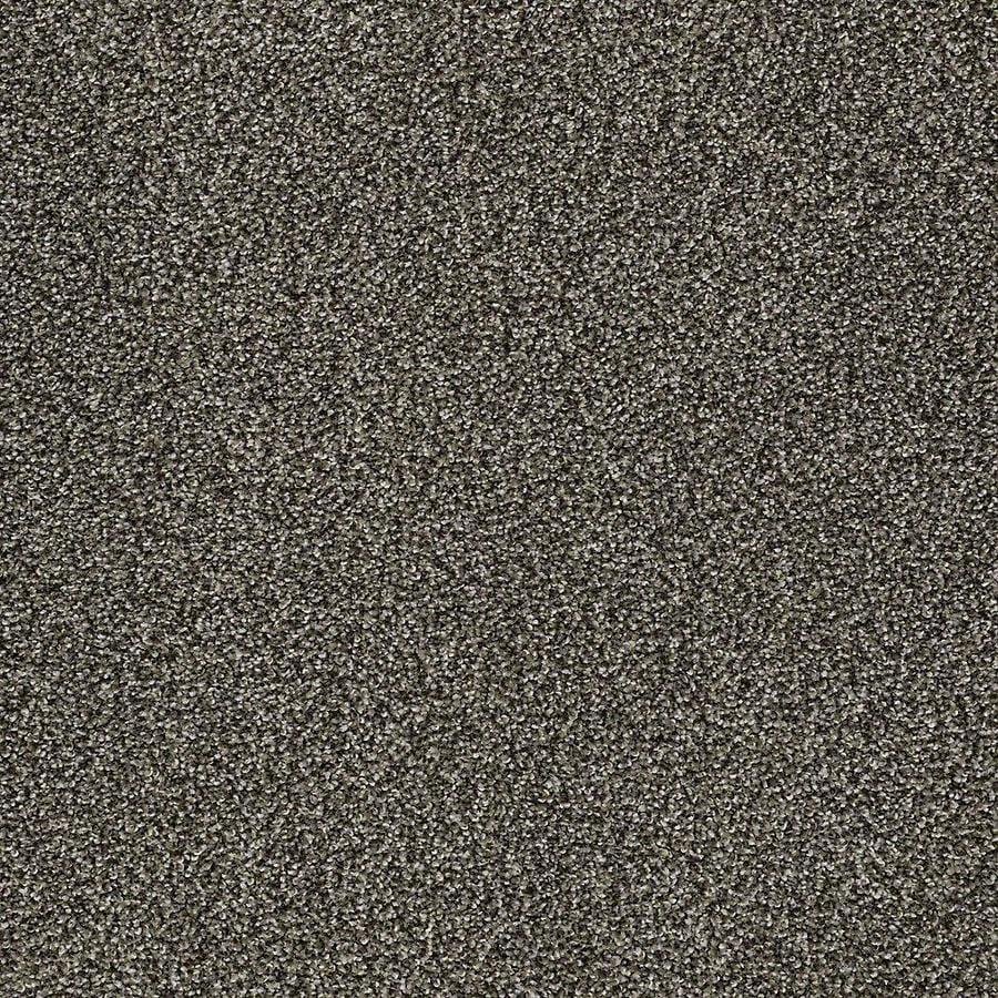 STAINMASTER PetProtect Baxter I Doberman Textured Indoor Carpet