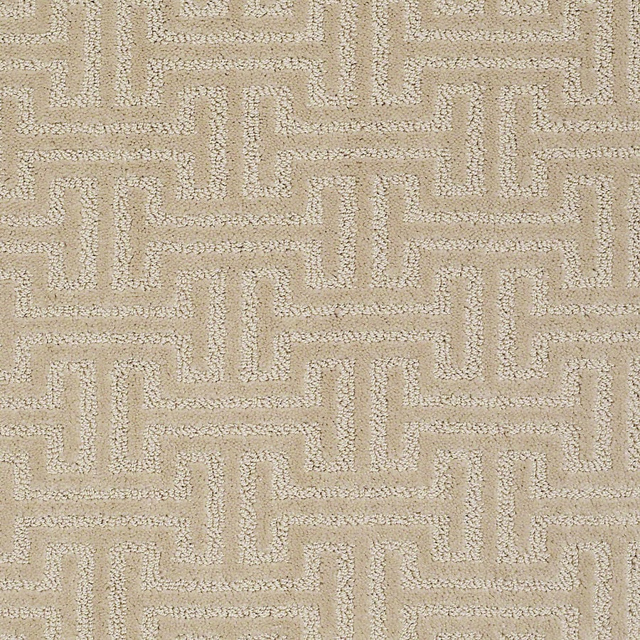 STAINMASTER Petprotect Belle Duke Berber/Loop Interior Carpet