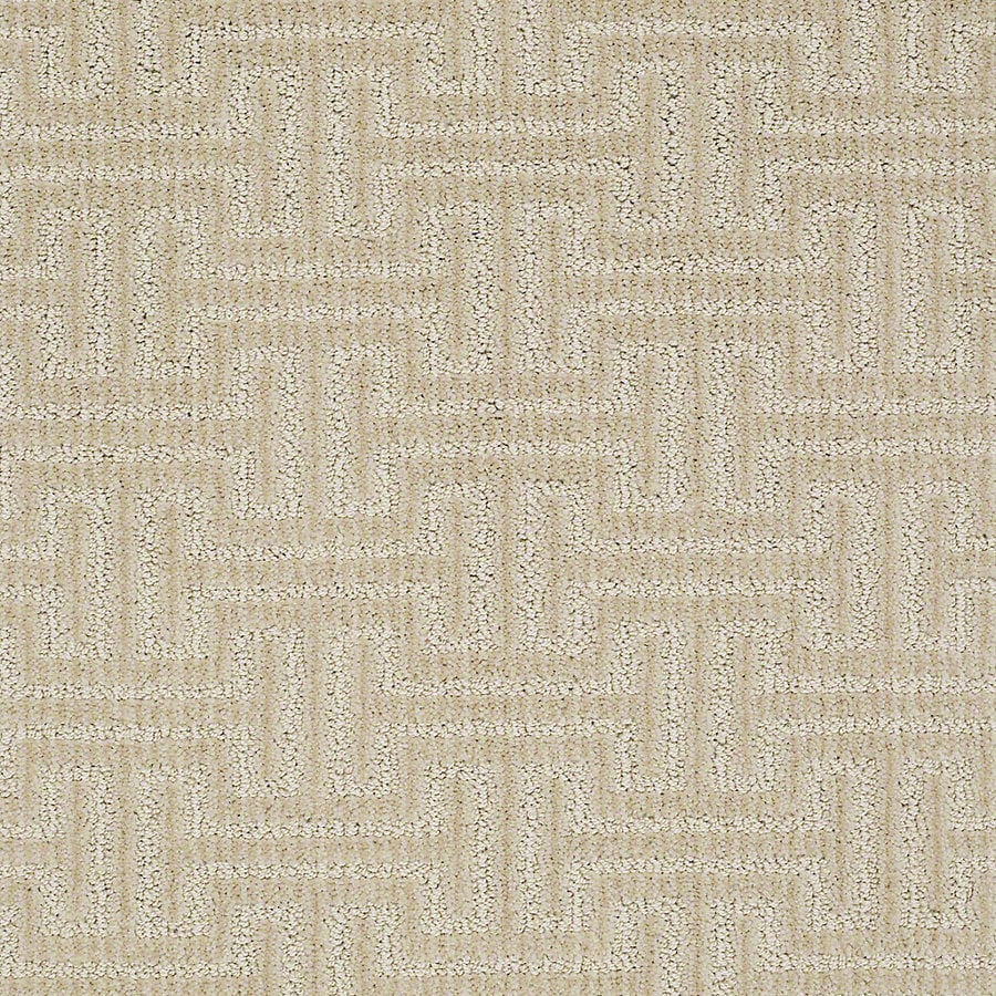 STAINMASTER PetProtect Belle Sheepdog Berber/Loop Interior Carpet