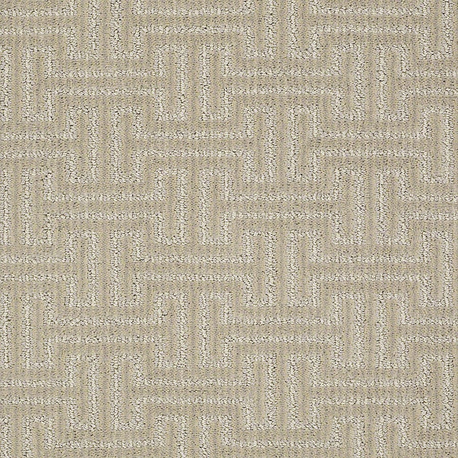 STAINMASTER Petprotect Belle Rocky Berber/Loop Interior Carpet