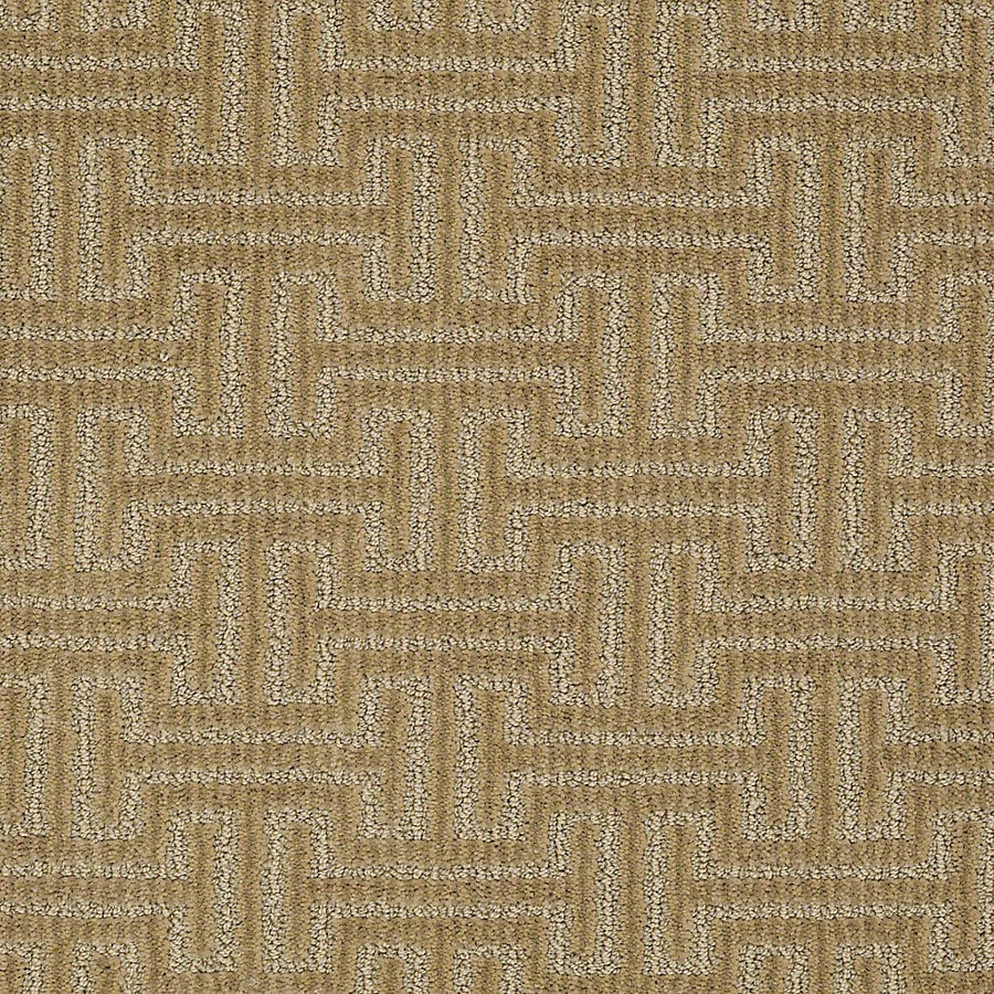 STAINMASTER PetProtect Belle 12-ft W x Cut-to-Length Bubba Berber/Loop Interior Carpet
