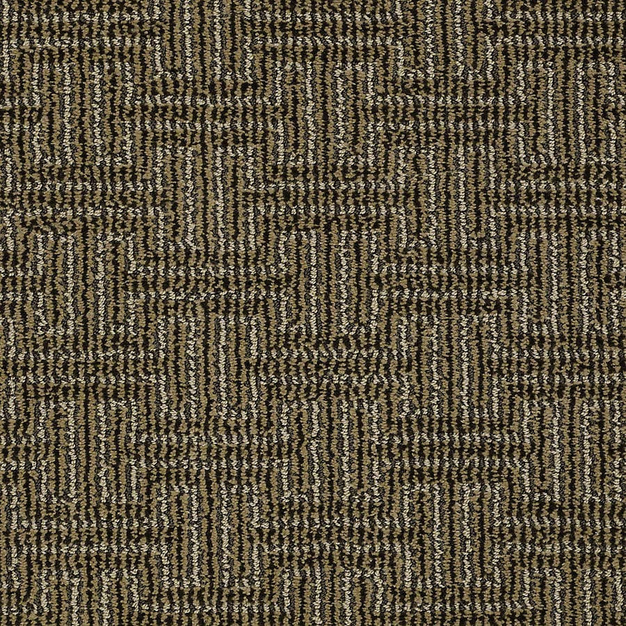STAINMASTER PetProtect Belle Wagging Tail Berber/Loop Interior Carpet
