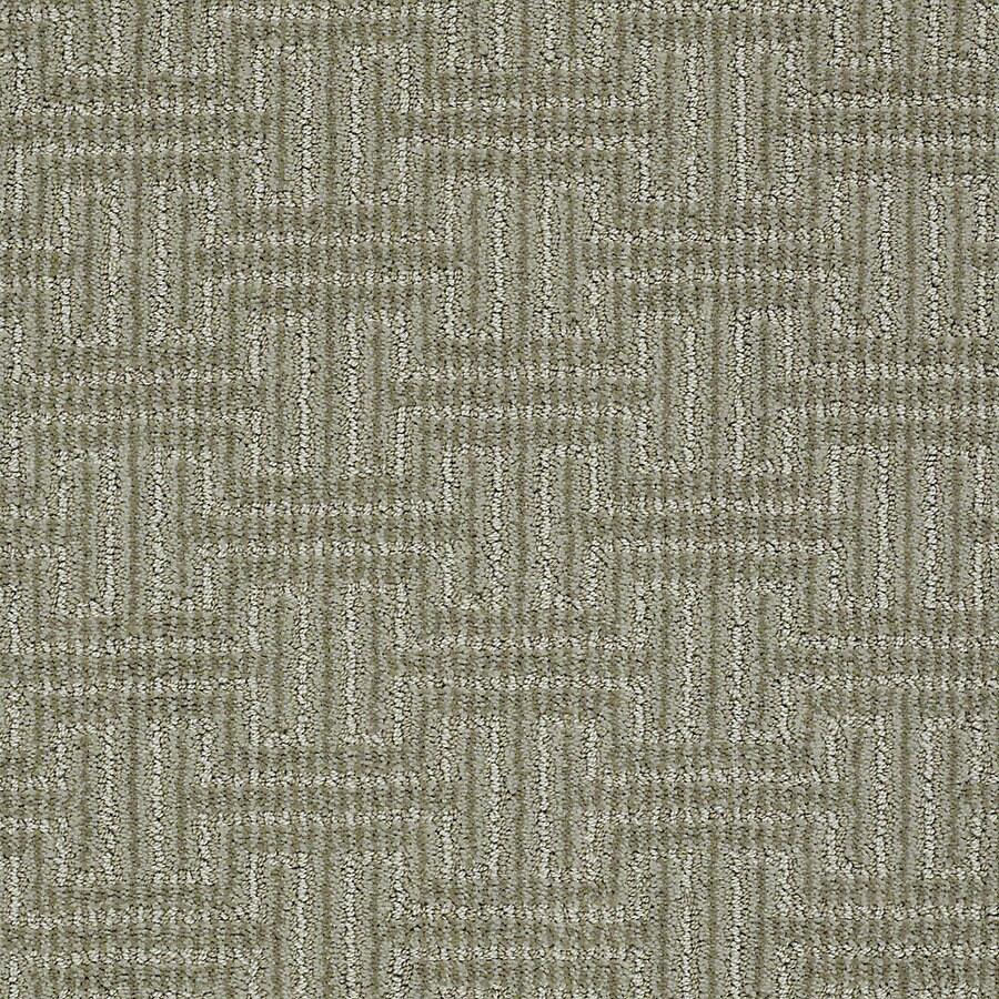 STAINMASTER PetProtect Belle 12-ft W x Cut-to-Length Maggie Berber/Loop Interior Carpet