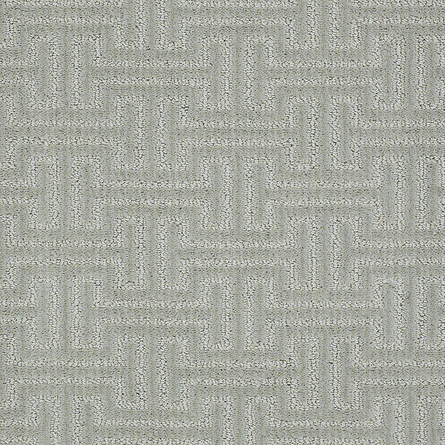 STAINMASTER PetProtect Belle 12-ft W x Cut-to-Length Barker Berber/Loop Interior Carpet