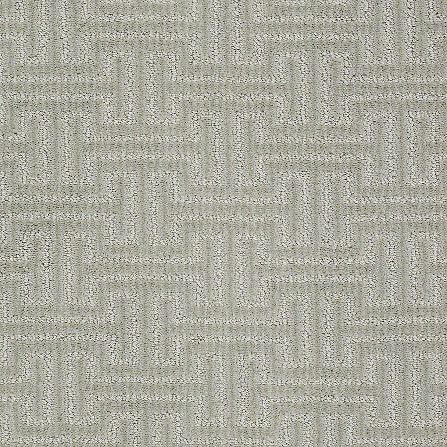 STAINMASTER Petprotect Belle Milo Berber/Loop Interior Carpet