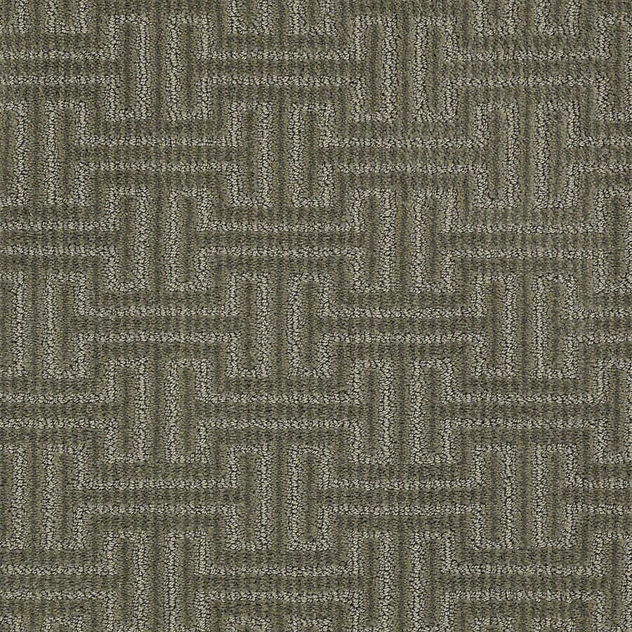 STAINMASTER Petprotect Belle Shake Berber/Loop Interior Carpet