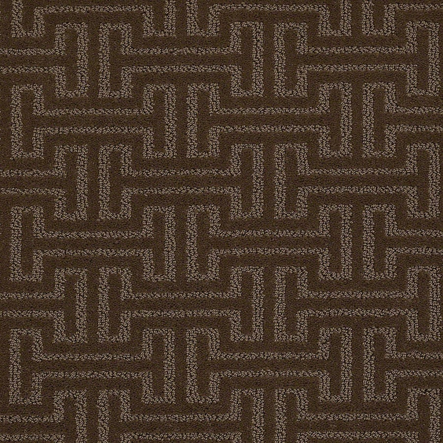 STAINMASTER PetProtect Belle 12-ft W x Cut-to-Length Coco Berber/Loop Interior Carpet