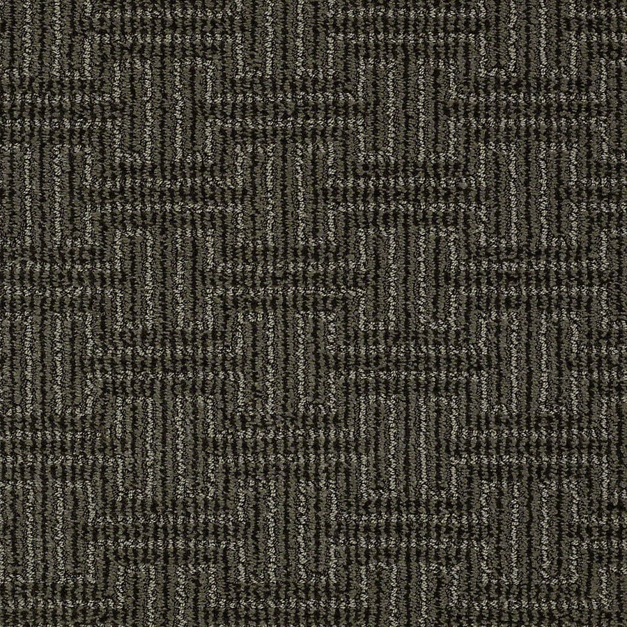 STAINMASTER PetProtect Belle 12-ft W x Cut-to-Length Toby Berber/Loop Interior Carpet