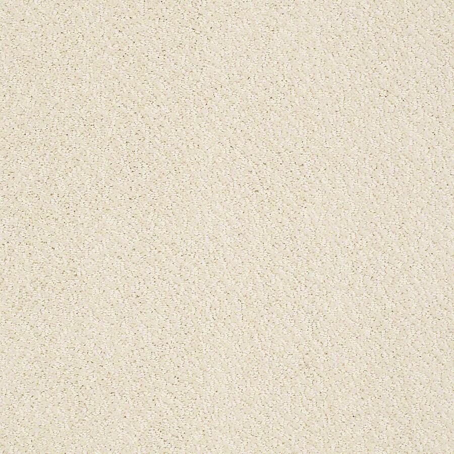 Shop stainmaster petprotect bianca marley berber loop for Berber carpet