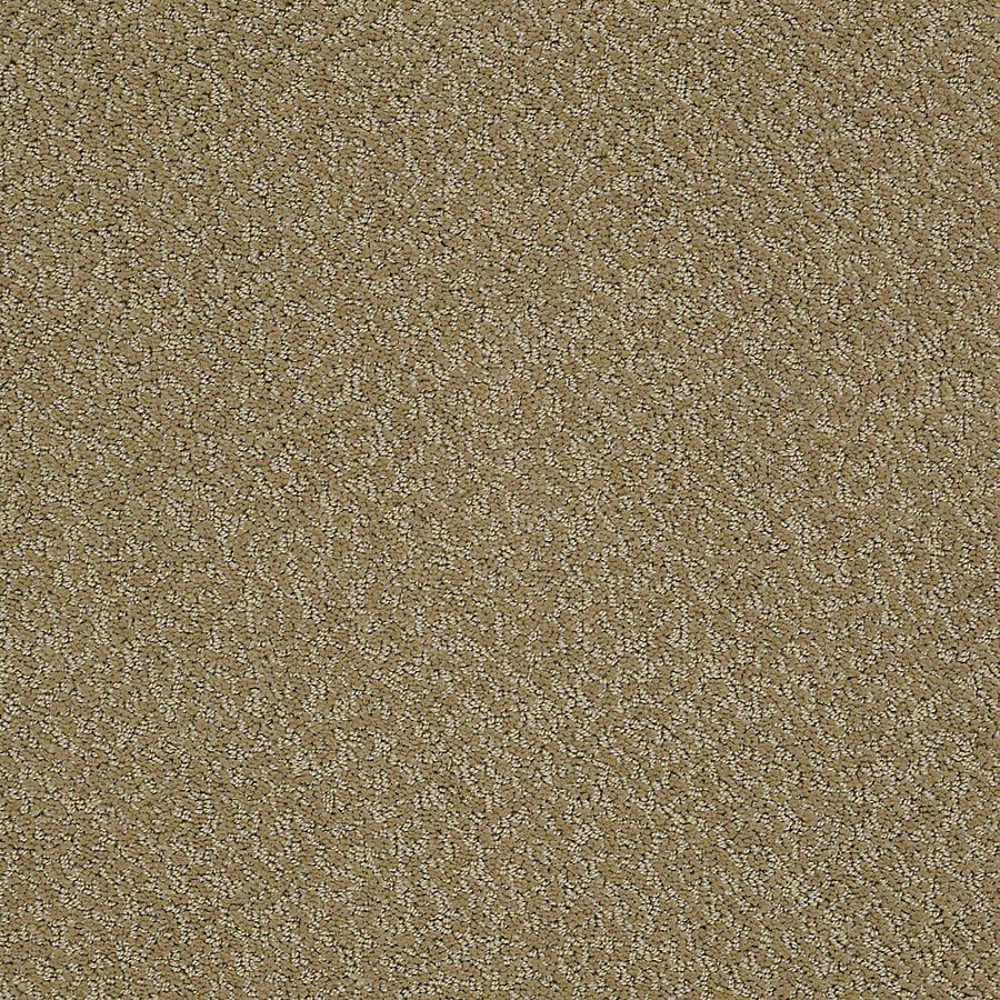 STAINMASTER PetProtect Bianca Duke Berber/Loop Interior Carpet