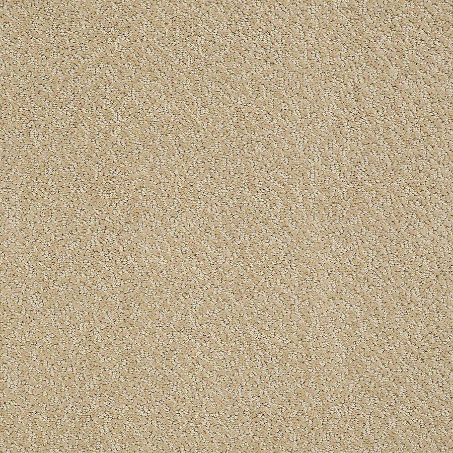 STAINMASTER PetProtect Bianca 12-ft W x Cut-to-Length Spike Berber/Loop Interior Carpet