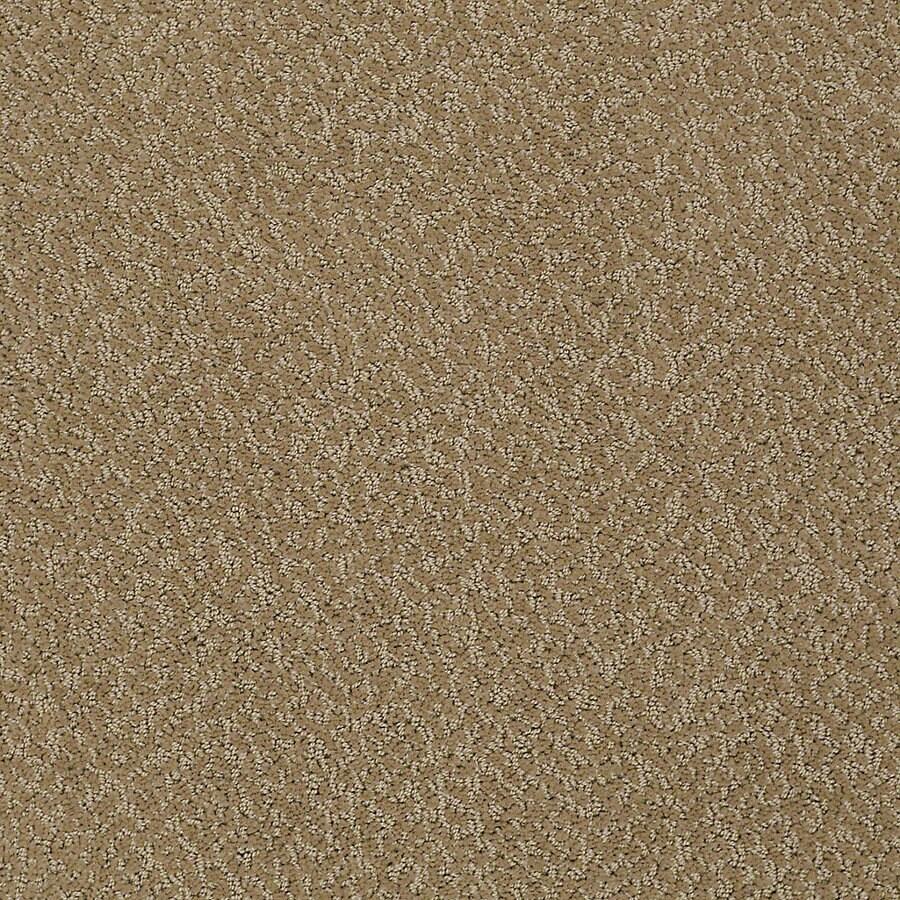STAINMASTER PetProtect Bianca 12-ft W x Cut-to-Length Rufus Berber/Loop Interior Carpet