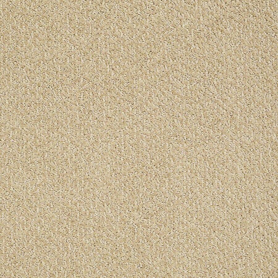 STAINMASTER PetProtect Bianca 12-ft W x Cut-to-Length Pup Berber/Loop Interior Carpet