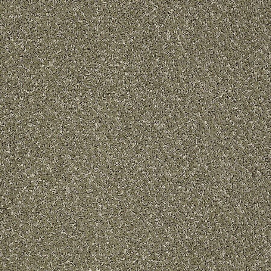 STAINMASTER PetProtect Bianca 12-ft W x Cut-to-Length Pal Berber/Loop Interior Carpet